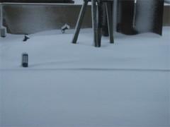 庄内はきっと地吹雪